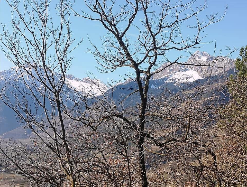Montagna di Merano. Fotografia Tatjana Meier